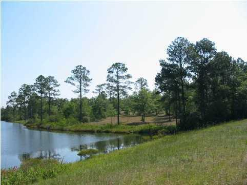 LOT 4 Magnolia Lake Drive, Defuniak Springs, FL 32433 (MLS #457086) :: RE/MAX By The Sea