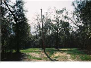 1230 Quail Circle, Destin, FL 32541 (MLS #586336) :: Scenic Sotheby's International Realty