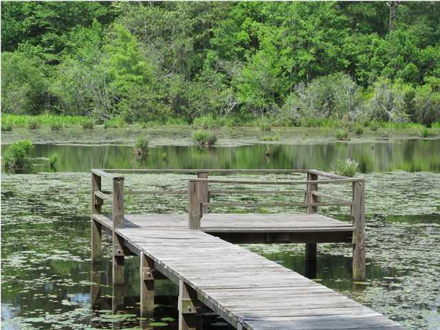 LOT 26 Pinewood Drive, Defuniak Springs, FL 32433 (MLS #596604) :: 30a Beach Homes For Sale