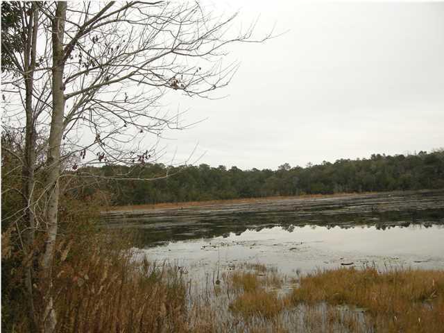 LOT 41 Lake Holley Circle, Defuniak Springs, FL 32433 (MLS #609218) :: Keller Williams Realty Emerald Coast