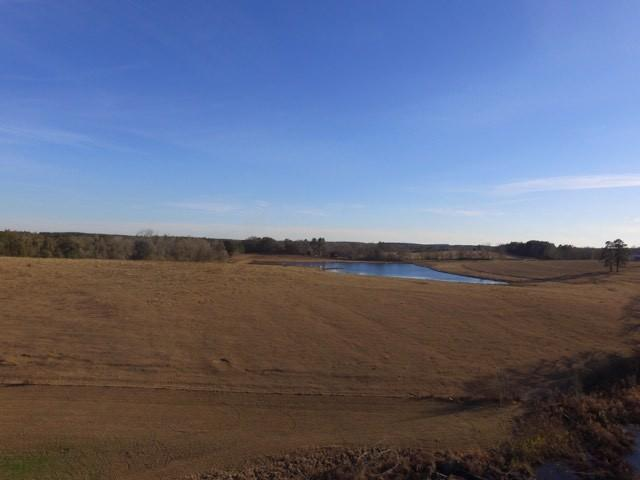 115 ACRES St Hwy 54, Other, AL  (MLS #783490) :: Scenic Sotheby's International Realty
