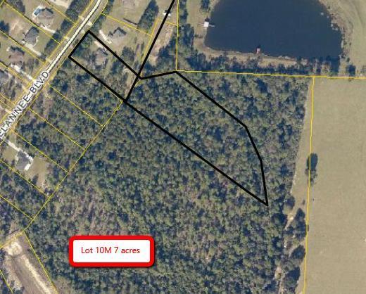 6537 Welannee Boulevard, Laurel Hill, FL 32567 (MLS #789551) :: Scenic Sotheby's International Realty