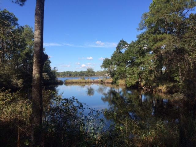 Lot 8B Lagrange Road, Freeport, FL 32439 (MLS #789575) :: Luxury Properties Real Estate