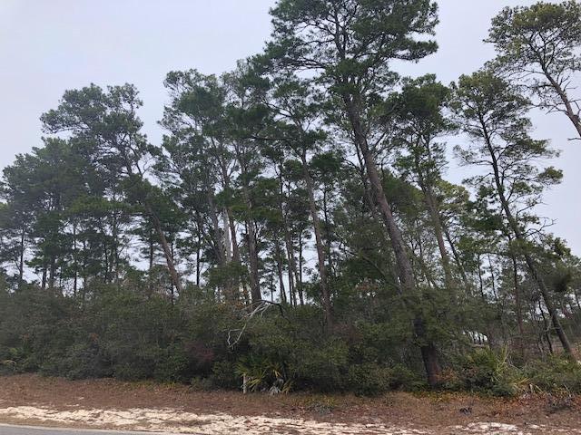 LOT 6 Seabreeze Boulevard, Inlet Beach, FL 32461 (MLS #789909) :: Homes on 30a, LLC