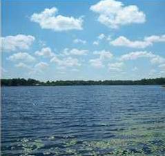 180 Holly King Road, Defuniak Springs, FL 32433 (MLS #797327) :: Luxury Properties Real Estate