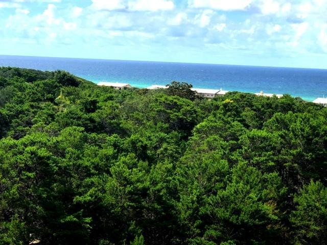 515 Topsl Beach Boulevard Unit 602, Miramar Beach, FL 32550 (MLS #824834) :: ResortQuest Real Estate
