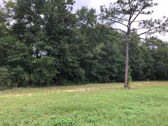 0 W Highway 90, Baker, FL 32531 (MLS #826849) :: RE/MAX By The Sea