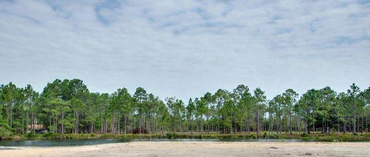 Lot 14 Hampton Creek Road - Photo 1