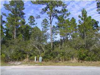 0 Da-Lisa Road, Milton, FL 32583 (MLS #362988) :: Levin Rinke Realty