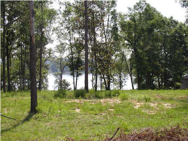 LOT 64 Kings Lake Boulevard - Photo 1