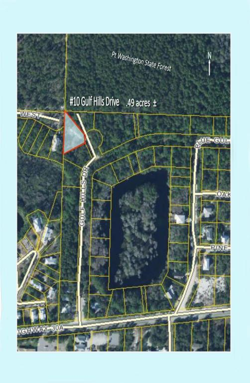 10 Gulf Hills Drive, Santa Rosa Beach, FL 32459 (MLS #786838) :: Coast Properties