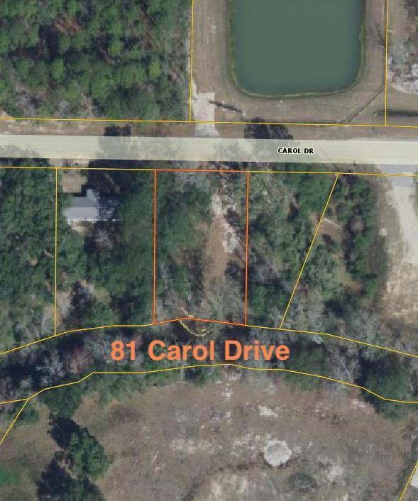 81 Carol Drive, Freeport, FL 32439 (MLS #801655) :: Luxury Properties Real Estate