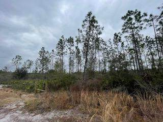 xxx Hwy 20, Other, FL  (MLS #862320) :: Linda Miller Real Estate