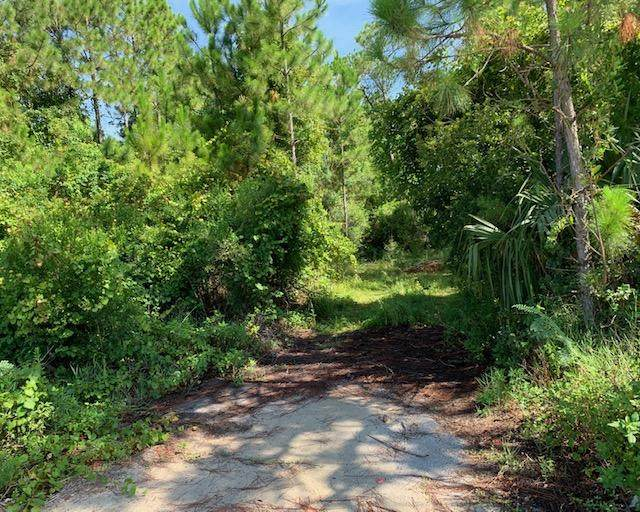 Lot 70 N Holiday Road, Miramar Beach, FL 32550 (MLS #850213) :: Scenic Sotheby's International Realty