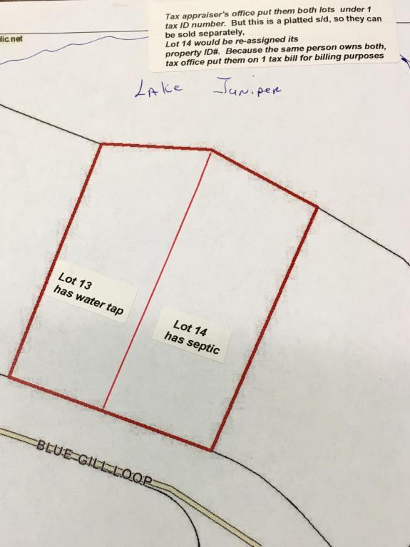 LOT 13 Blue Gill Loop, Defuniak Springs, FL 32433 (MLS #586610) :: Classic Luxury Real Estate, LLC