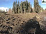 lots 18,19,&20 Chena Landings Loop Road - Photo 16