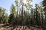 NHN Tribulation Trail - Photo 4