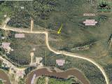 LOT 22 Chena Bend Drive - Photo 3