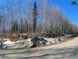 NHN Arctic Loon Circle - Photo 1