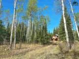NHN Alaska Highway - Photo 1