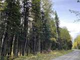NHN Old Richardson Highway - Photo 1