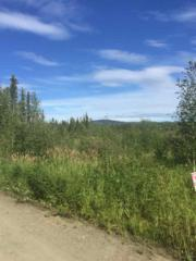 nhn Nhn Nenana, Nenana, AK 99760 (MLS #132012) :: Madden Real Estate