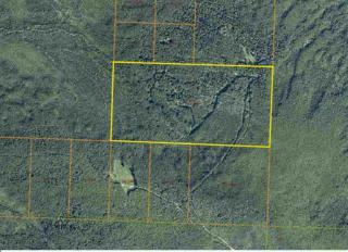 NHN Standard Creek Road, Ester, AK 99725 (MLS #132319) :: Madden Real Estate