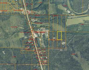 NHN Hollies Acres Drive, Salcha, AK 99714 (MLS #132958) :: Madden Real Estate