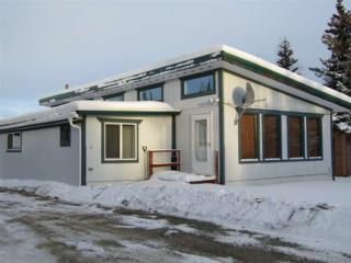 248 Clearwater Road, Delta Junction, AK 99737 (MLS #133149) :: Madden Real Estate