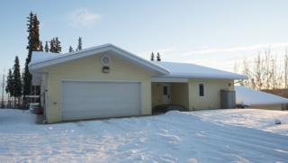 3321 Chetana Drive, Fairbanks, AK 99709 (MLS #133243) :: Madden Real Estate