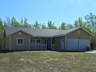 4820 K Loop, Delta Junction, AK 99737 (MLS #133269) :: Madden Real Estate