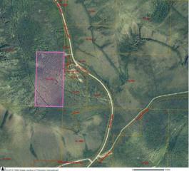 NHN Amayun Lane, Fairbanks, AK 99712 (MLS #133338) :: Madden Real Estate