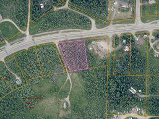 1635 Farmers Loop Road, Fairbanks, AK 99709 (MLS #133347) :: Madden Real Estate