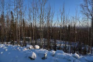 L11B02 Ellesmere Drive, Fairbanks, AK 99709 (MLS #133400) :: Madden Real Estate