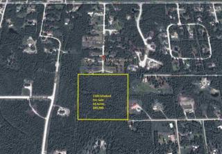 1185 Ichabod Street, North Pole, AK 99705 (MLS #133405) :: Madden Real Estate