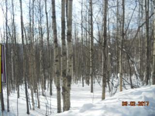 207 Eagle Ridge Road, Fairbanks, AK 99712 (MLS #133419) :: Madden Real Estate
