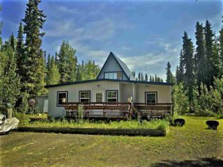 1194 Wintergreen Lane, North Pole, AK 99705 (MLS #133420) :: Madden Real Estate