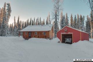5364 Ingrid Drive, Salcha, AK 99714 (MLS #133422) :: Madden Real Estate