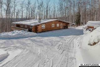 4299 Old Nenana Highway, Fairbanks, AK 99709 (MLS #133430) :: Madden Real Estate