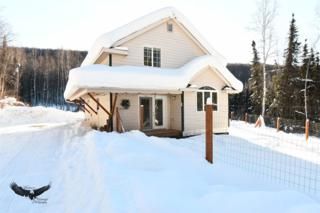 1495 Riffle Board Road, Fairbanks, AK 99712 (MLS #133444) :: Madden Real Estate