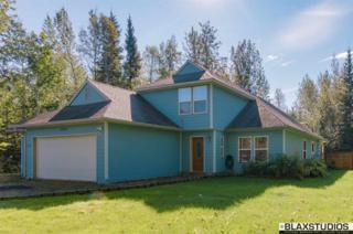 3545 Biathalon Avenue, North Pole, AK 99705 (MLS #133462) :: Madden Real Estate