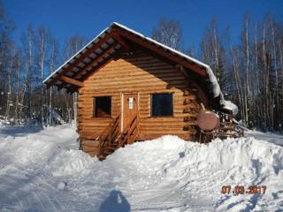 1407 Leta Street, Fairbanks, AK 99709 (MLS #133473) :: Madden Real Estate