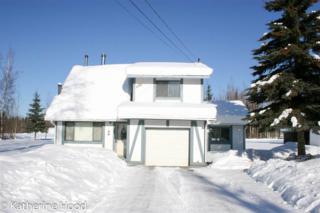 1164 Vasi Way, North Pole, AK 99705 (MLS #133481) :: Madden Real Estate