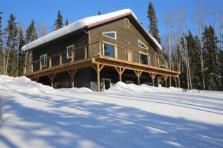 2395 Tribulation Trail, Fairbanks, AK 99709 (MLS #133482) :: Madden Real Estate