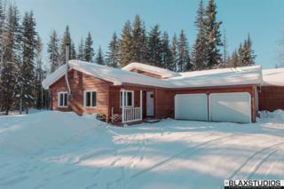 3043 Maule Lane, North Pole, AK 99705 (MLS #133488) :: Madden Real Estate
