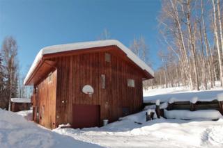 3825 Frenchman Road, Fairbanks, AK 99709 (MLS #133505) :: Madden Real Estate
