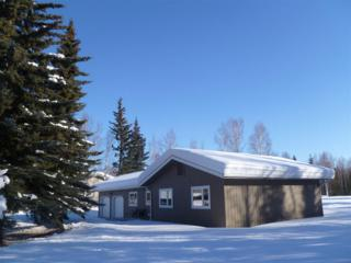 1167 Airline Drive, North Pole, AK 99705 (MLS #133521) :: Madden Real Estate