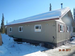 990 Shaker Box Court, Fairbanks, AK 99709 (MLS #133531) :: Madden Real Estate
