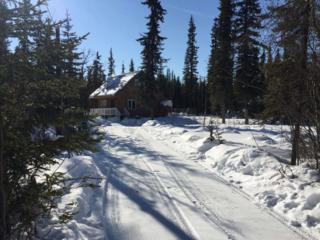 2929 Killik Lane, Fairbanks, AK 99709 (MLS #133532) :: Madden Real Estate
