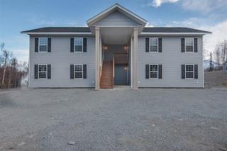 NHN Tanada Road, North Pole, AK 99705 (MLS #133533) :: Madden Real Estate